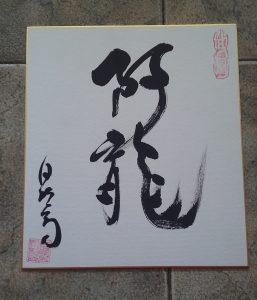 Aryu Budo namn som ges av Sôke Hatsumi